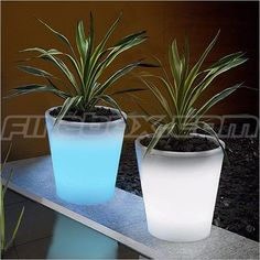 Paint flower pots with Rustoleums Glow in the Dark paint. Absorbs sunlight by day & glows at night. Great landscape and gardening idea.