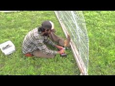 chicken tractor made of cattle panels