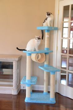 THE ARMARKAT DISTINGUISHED CAT TREE – FREE SHIPPING AND TAX INCLUDED on all designer cat trees.  No hidden fees on our website. Add style to your home with our luxury cat furniture.  Watch your kitties play and have fun our cat trees/cat condos. Shop now from and add style to your home with our luxury cat trees. These can also be used as scratching posts too! ON SALE TODAY!  #cat #cattree #designercattree #catcondo #kittycondo #scratchingpost #designerpetfurniture