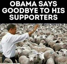 Wake up America! Obama Lies, Liberal Hypocrisy, Liberal Agenda, Thing 1, Social Issues, We The People, That Way, Laugh Out Loud, Make Me Smile