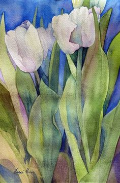 Marni Maree weiße Tulpen, Aquarell, 10 x Watercolor Sketchbook, Watercolor Flowers, Watercolor Paintings, Watercolors, Floral Paintings, Indian Paintings, Watercolor Portraits, Watercolor Landscape, Abstract Paintings