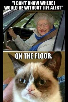 OMG so terrible but funny