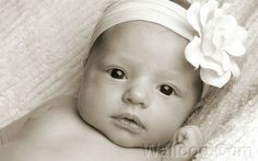 newborn baby photos - Google Search