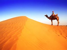 Rajasthan - The Land of Royals: Click here for more details - http://www.travelmasti.com/domestic/rajasthan/index.htm