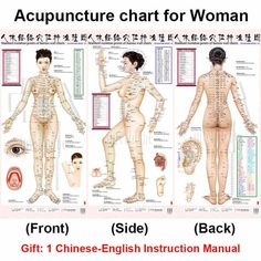 Feedback Questions about Standard Meridian Acupuncture Points Chart and ZhenJiu Moxibustion Acupoint Massage Chart for Head Hand Foot Body Health Care on Meridian Acupuncture, Acupuncture Benefits, Cupping Therapy, Massage Therapy, Craniosacral Therapy, Acupressure Points Chart, Meridian Points, Acupressure Treatment, Reflexology Massage