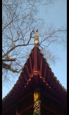 @Ming Platt Xiaoling Mausoleum of Nanjing By Nokia Mobile phone