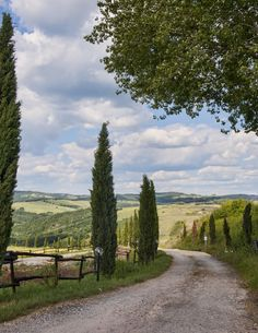 *🇮🇹 Country road near Volterra (Tuscany, Italy) by Marc Pelletier Beautiful World, Beautiful Places, Places To Travel, Places To Go, Tuscany Landscape, Countryside Landscape, Tuscany Italy, Sorrento Italy, Italy Italy