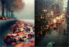 Дождь... дождь... дождь...«Разве это не чудо?». Обсуждение на LiveInternet - Российский Сервис Онлайн-Дневников