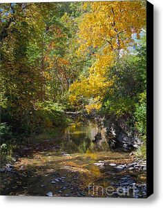 Fall Foliage by William Norton is offered for a limited time on a 16 x 20 stretched canvas for $95.