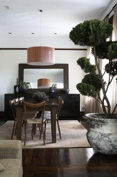 Darlinghurst Apartment / Mr Waller.  Shaped Juniper Tree