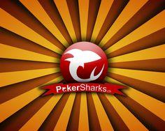 Wir bieten allen Schweizer Pokerfans Nachrichten aus der Nationalen und Internationalen Pokerszene an. Das Poker-Portal beinhaltet Strategie- und Regelartikel, so wie ein Video-Portal mit TV-Aufzeichnungen. Weiter werden Blogs von diversen Pokerspielern publiziert.