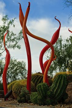 Chihuly Glass at Phoenix Desert Botanical Gardens, Arizona