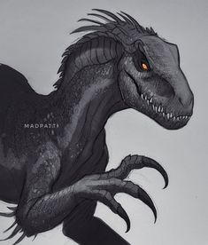 Dinosaur Drawing, Dinosaur Art, Dinosaur Coloring, Jurassic World Fallen Kingdom, Jurassic Park World, Jurassic World Raptors, Falling Kingdoms, Creature Drawings, Animal Drawings