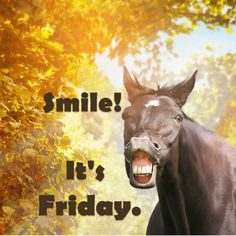 It's Friday! Have a great weekend.