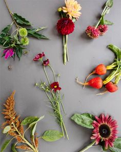 floral how-to // ingredients for a fall centerpiece