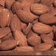 Growing All-In-One Almond - Additional Nut Trees - Plant Manuals - Stark Bro's