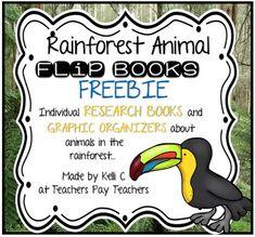 Rainforest Animals Flip Books-Writing Using Research & Gra Rainforest Classroom, Rainforest Activities, Rainforest Theme, Rainforest Animals, Animal Activities, Language Activities, Amazon Rainforest, Summer Activities, Kindergarten Writing Activities