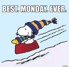 Snowy Monday!