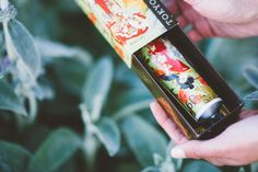 Tokyo Milk | Finding Beautiful Truth