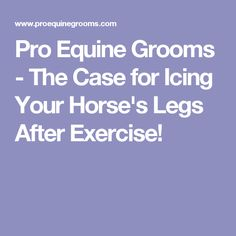 Pro Equine Grooms - The Case for Icing Your Horse's Legs After Exercise!