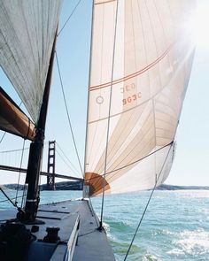 5 Popular Types of Sailboats and Why They're Loved – Voyage Afield Cruise Italy, Booking Com, San Francisco California, Sail Away, Land Scape, Strand, Adventure Travel, Forest Adventure, Summer Vibes
