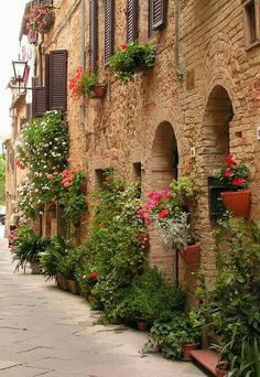 PIENZA. (Toscana)