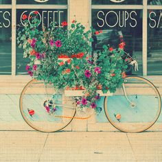 Bicycle flower box (By alice b. gardens)