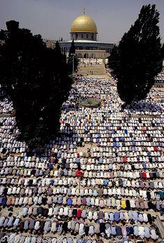 Qibat Al Sakhra Al - Musharaffa inside Al Haram Al Qudsi Ash - Sharif ( Al Masjed Al Aqsa ) during prayer, Falasteen