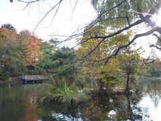 Shakujii-koen(Garden) Tokyo Japan