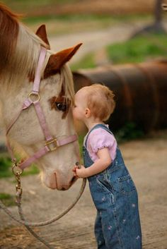 Little Kid eye to eye with sweet horse in a pink halter.