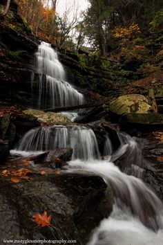 Waterfall along Little Four Mile Run, Tioga County, PA.