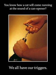 Just sayin... #WineWednesday