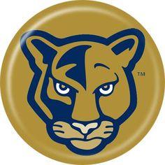 FIU - Florida International University Golden disc