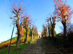 """Muntavégia  Quella delle terrazze di Montevecchia è tra le più belle posizioni della Brianza: uno spalto altissimo, un balcone che si erge, fuori dalle nebbie, e si affaccia dritto a sud; nelle giornate di vento si vede dalla Cisa al Monte Rosa"""". (Mario Soldati)"""