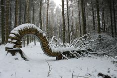 'Reconnected' Sculptures Turn Felled Trees Into Outdoor Art By Philippe Handford
