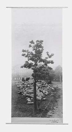 """Joseph Beuys  Flag: 7000 Eichen, 7000 Eichen """"Erste Eiche vor Basaltsteinen auf Friedrichsplatz"""", 1985"""