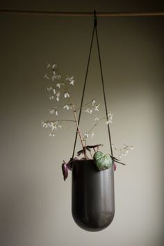 Charcoal Grande Balle hanging metal succulent by PlantworksPDX