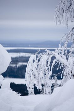 """ blue moment ""   Kumpuvaara, Kuusamo Photo Aili Alaiso Finland"