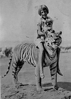tiger, peke and girl