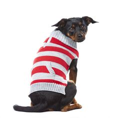 PupCrew Red Heather Gray Striped Peekaboo Zipper Sweater, Small