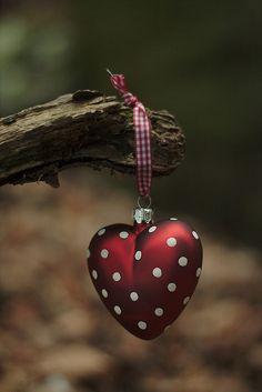 a heart found