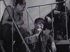 PIECZONE GOŁĄBKI (1966) - cały film