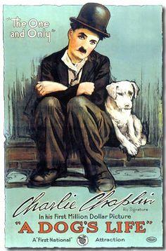AFICHE DE LA PELICULA: VIDA DE PERROS /  CHARLES CHAPLIN