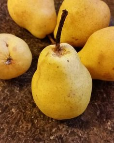 Organic home grown pears, spots and all. Sweet ingredient for a cake.