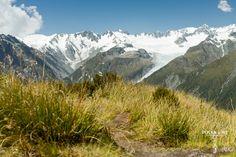 Fox Glacier, Southern Alps, New Zealand