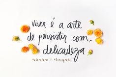 Floriografia: Begônia no @adorofarm