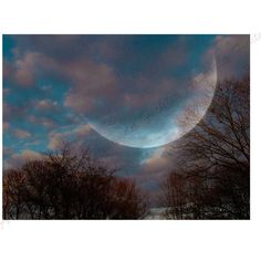 Digital Photography, Cloudy Skies, Cotton Candy Clouds, Moon, Blend,... (€24) ❤ liked on Polyvore featuring home, home decor, wall art, branch wall art, cloud wall art, photo wall art, moon home decor and photographic wall art