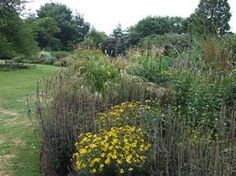 Image result for tuinontwerp ierse tuin