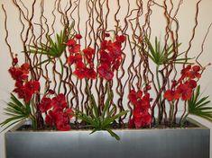 Rote Orchideen Blüten und Zweige arrangiert in einem grauen Blumenkasten