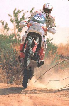 Byrd der Rallye-Tenere